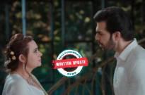 Kahaan Hum Kahaan Tum: Naren asks Veena to not pamper Rohit anymore