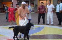 Dog chases Bapuji & Jethalal in Taarak Mehta Ka Ooltah Chashmah