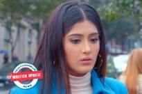 Choti Sardarni : Meher Gives Up On Manav