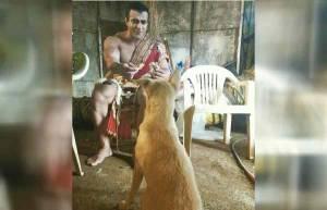 Pet love!
