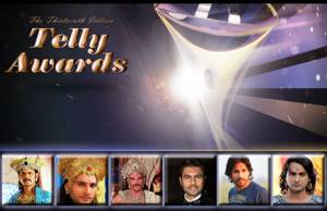 Who will win the Best Actor in a Supporting Role (Drama) in the 13th Indian Telly Awards?