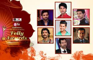 Who deserves to win the Best Actor in a Lead Role in the 14th Indian Telly Awards?