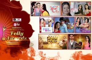Which series deserves to win Best Daily Show in the 14th Indian Telly Awards?