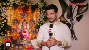 Bappa has really been a Vighnaharta for me - Arjun Bijlani
