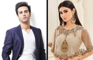 Pulkit Samrat & Mouni Roy were part of Kyunki...?