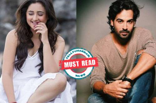 Will Rashami Desai get married to rumoured boyfriend Arhaan Khan in Big Boss 13?