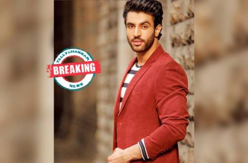 Zebby Singh to play the negative lead in Star Plus' Yeh Hai Chahatein