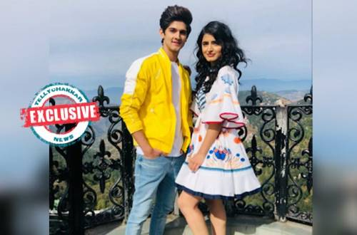 Rohan Mehra and Vinali Bhatnagar bag their next!