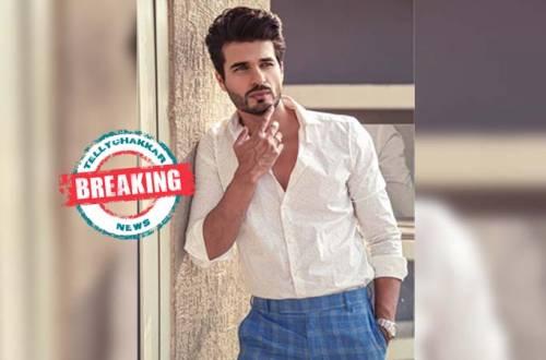 Naagin 3 fame Puneett Chouksey to play the male lead in Colors' Naati Pinky Ki Lambi Love Story
