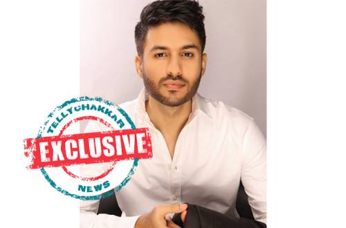 EXCLUSIVE: Kumkum Bhagya fame Pankaj Bijlani bags Star Plus' Yeh Rishta Kya Kehlata Hai