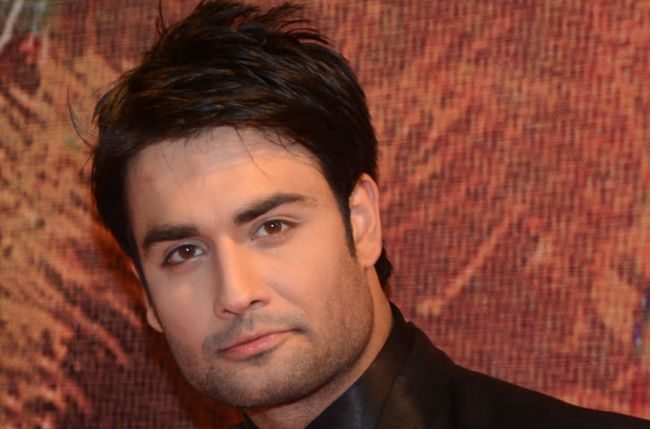 Image result for vivian dsena