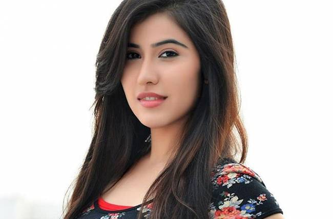 sheena bajaj wikipedia