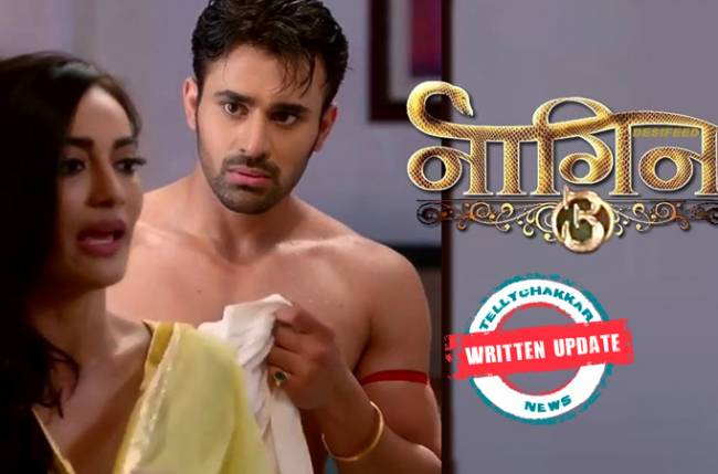 Naagin 3: Shravani decides to take revenge