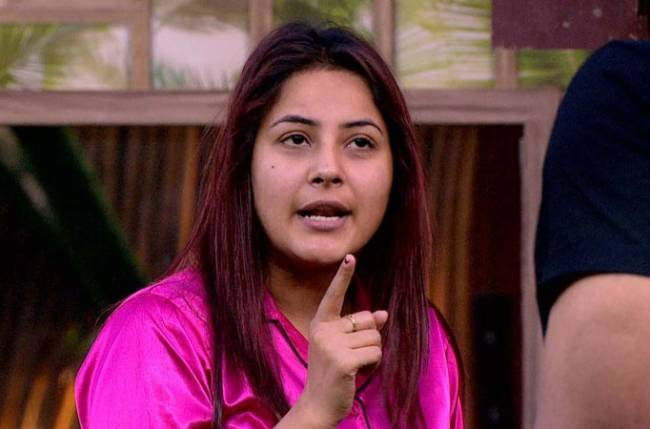 Bigg Boss 13 Has Shehnaaz Gill Lied About Her Age