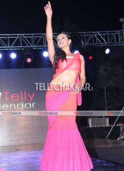 Launch of Telly Calendar 2015