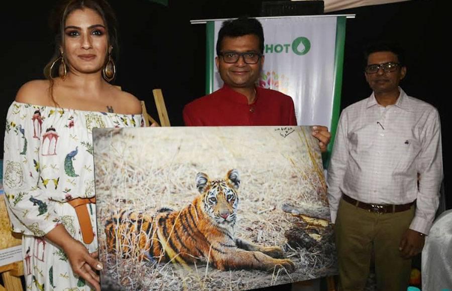 Raveena Tandon & Gracy Singh grace wildlife photography exhibition